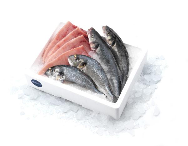 spada orata branzino pescolo_CALIPSO