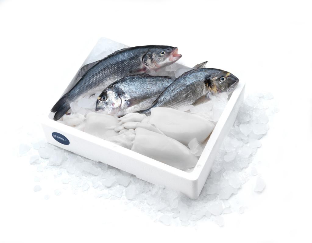 branzino orata seppia pescolo_MEDEA