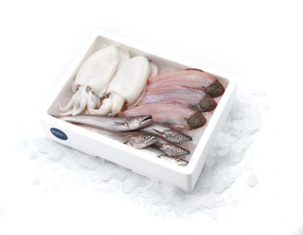 sogliola merzullo seppia pescolo_ELETTRA
