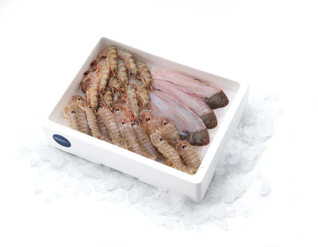 gamberi-canocchie-sogliole-pescolo_ADRIATICA-PLUS